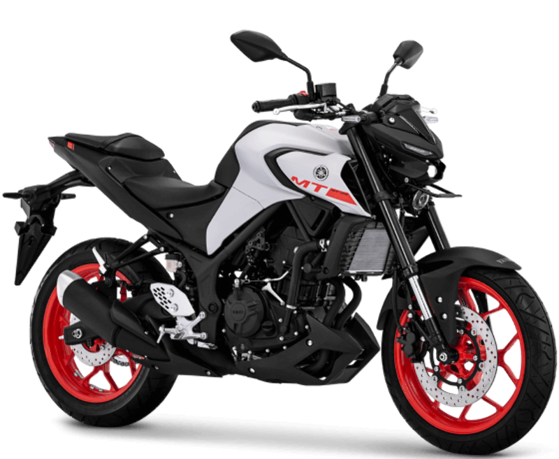 All New Yamaha MT-25